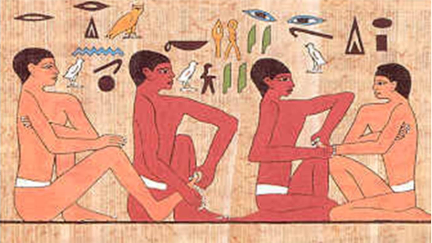 papyrus edit for website-3